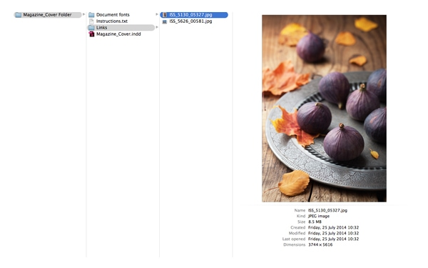 indesign packaging file package files