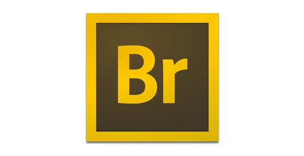 when should I use InDesign or photoshop or Illustrator adobe bridge