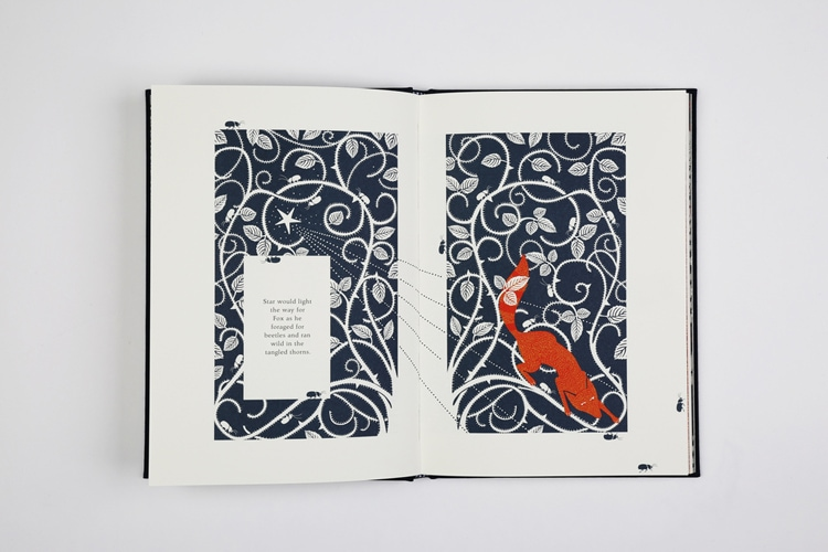 children's book design indesign publishing design book design book covers coralie bickford-smith the fox and the star