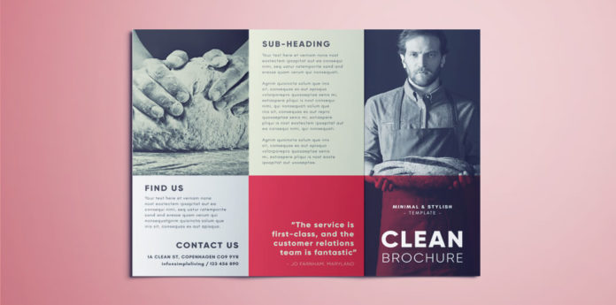 Amazing Clean Trifold Brochure Template Free Download - Tri fold brochure templates free download