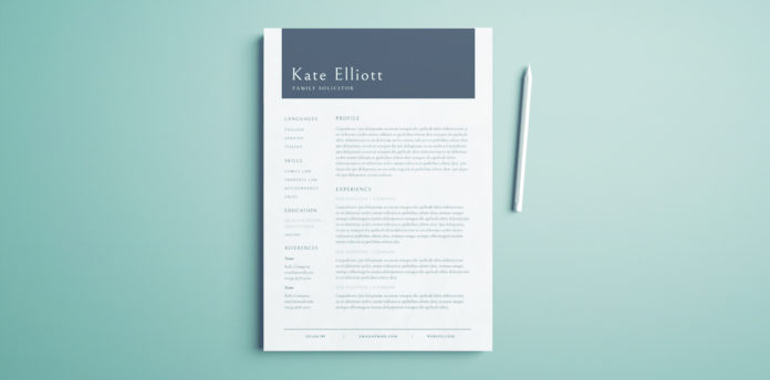 Free Professional Resume Template   Free InDesign Template   Professional  Layout