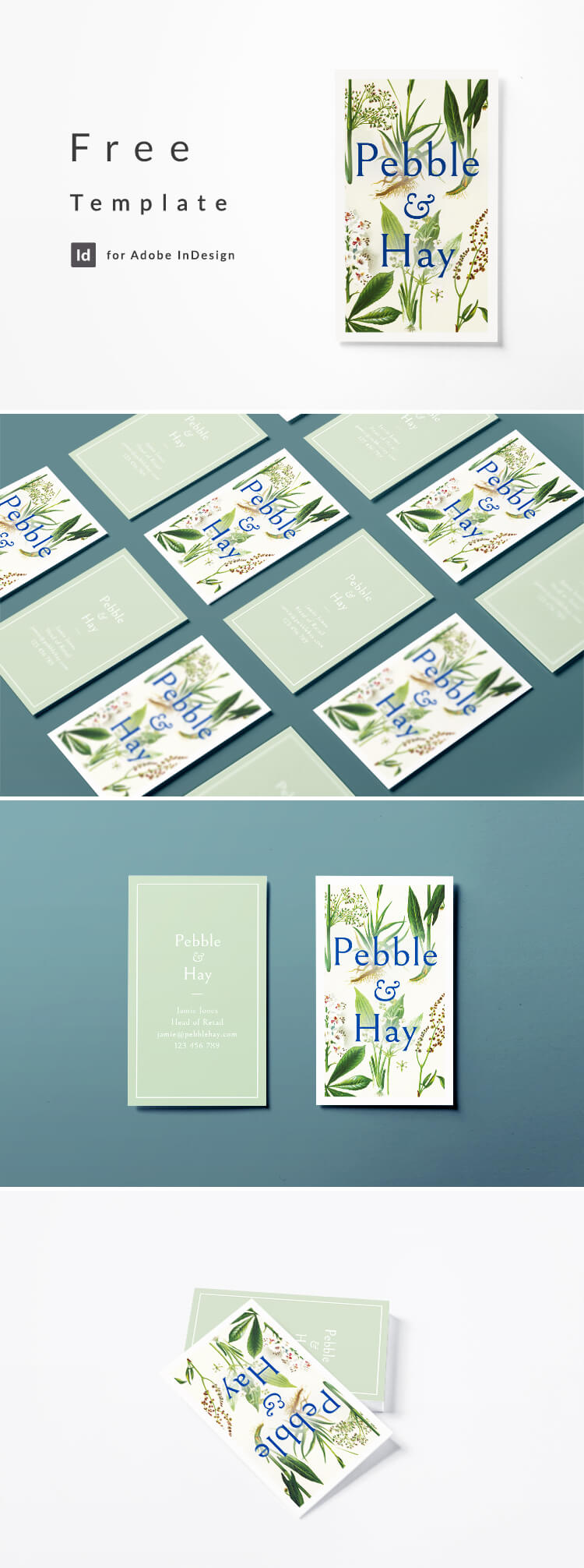 Vintage business card design with botanical illustration. Free download for Adobe InDesign CC.