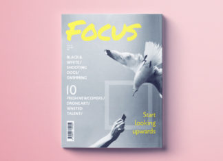 Magazine cover template for InDesign. Free to download magazine cover template.