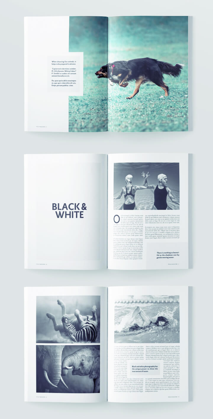 magazine spread - photography art magazine template for indesign - simple graphic design